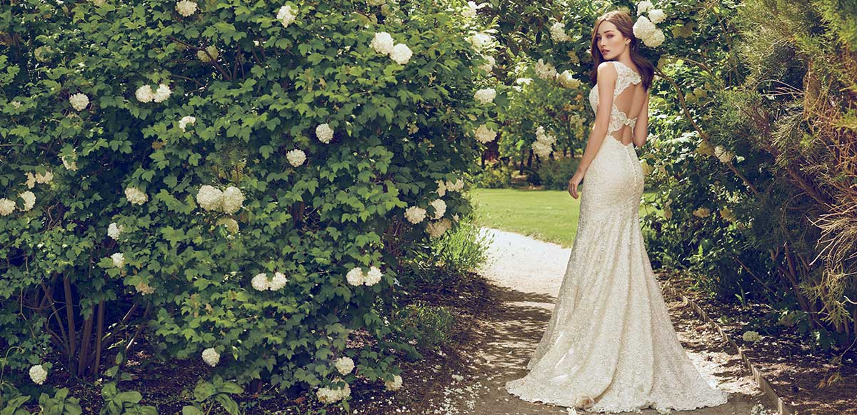 wedding dresses and bridal fashion